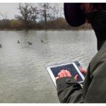 L_658_Birdwatching1